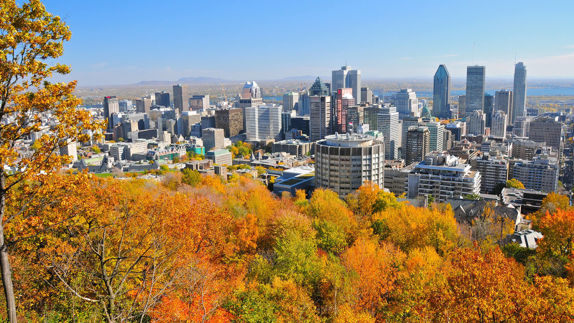 Montreal-1-3